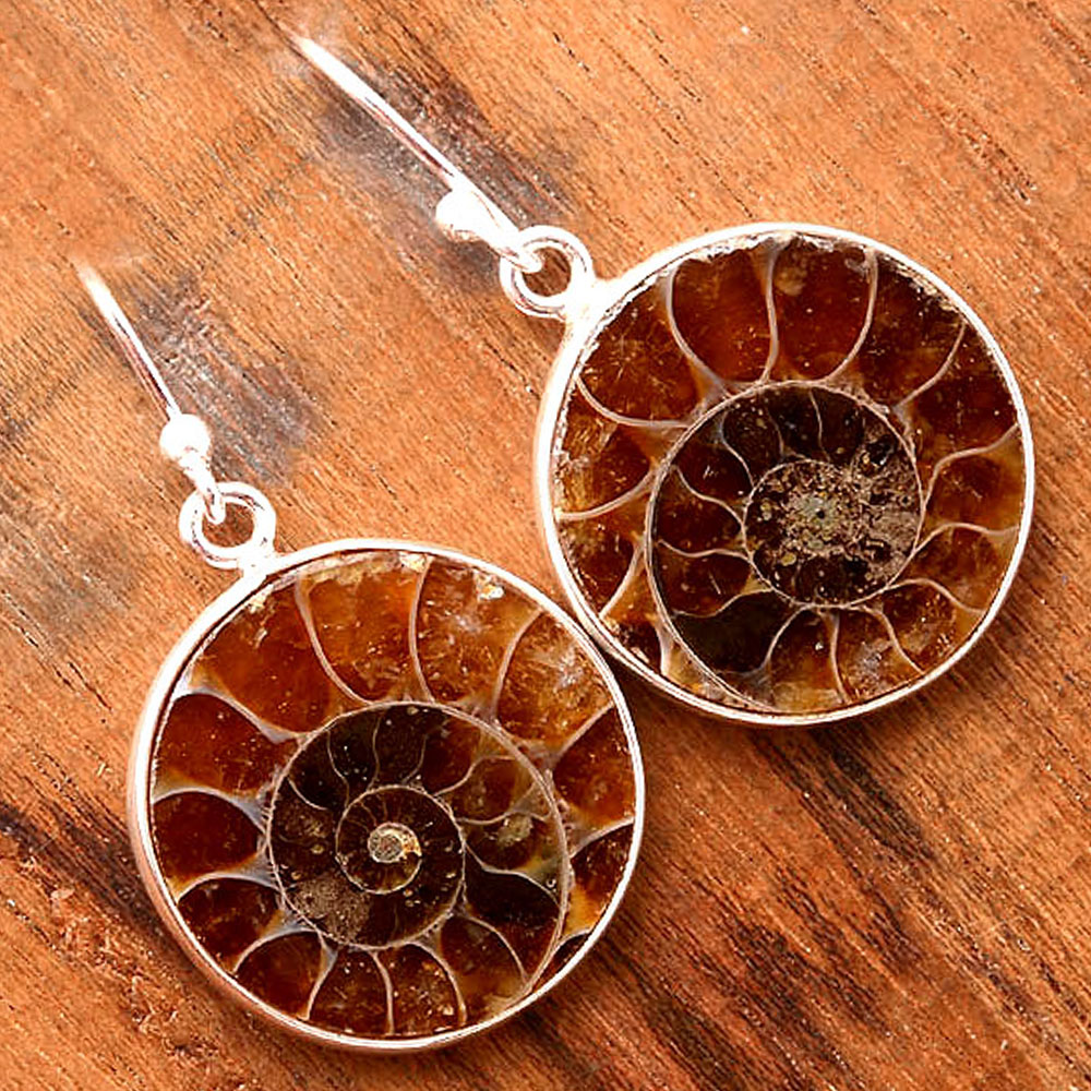 Natural Fossil Ammonite - Madagascar 925 Sterling Silver Earrings Jewelry SDE32408
