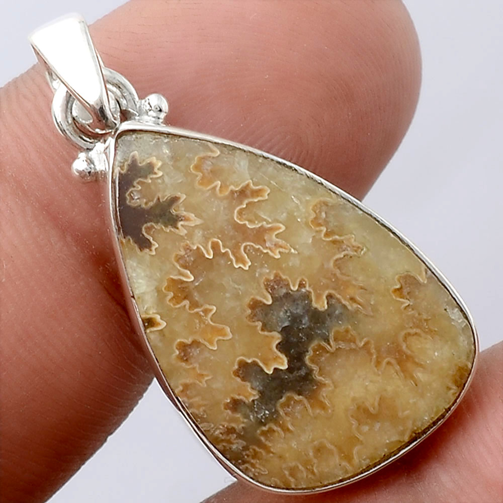 Natural Sutured Ammonite - Madagascar 925 Sterling Silver Pendant Jewelry SDP72096